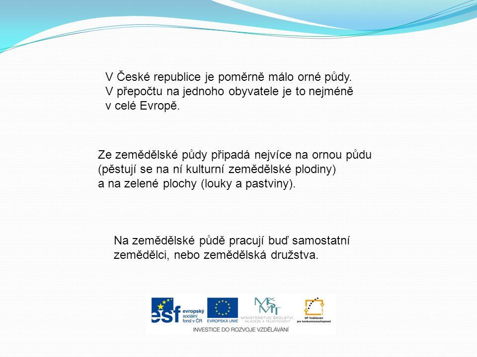 V České republice je poměrně málo orné půdy.