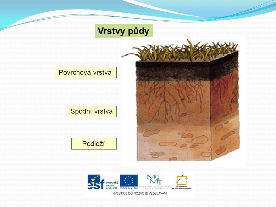 Vrstvy půdy Povrchová vrstva Spodní vrstva Podloží