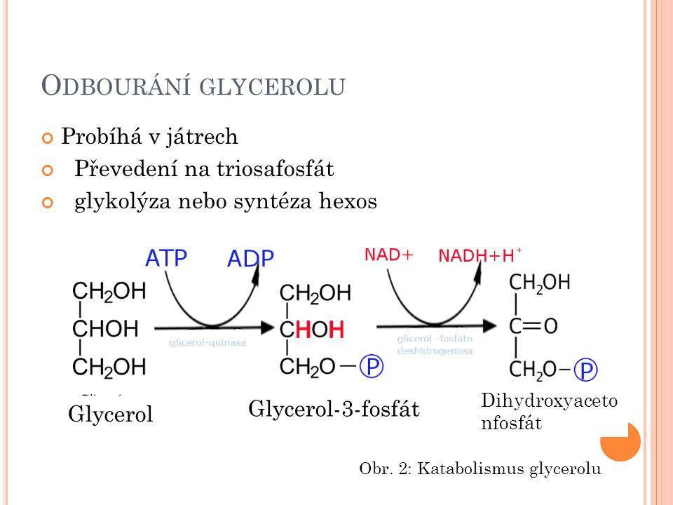 Odbourání glycerolu Probíhá v játrech Převedení na triosafosfát