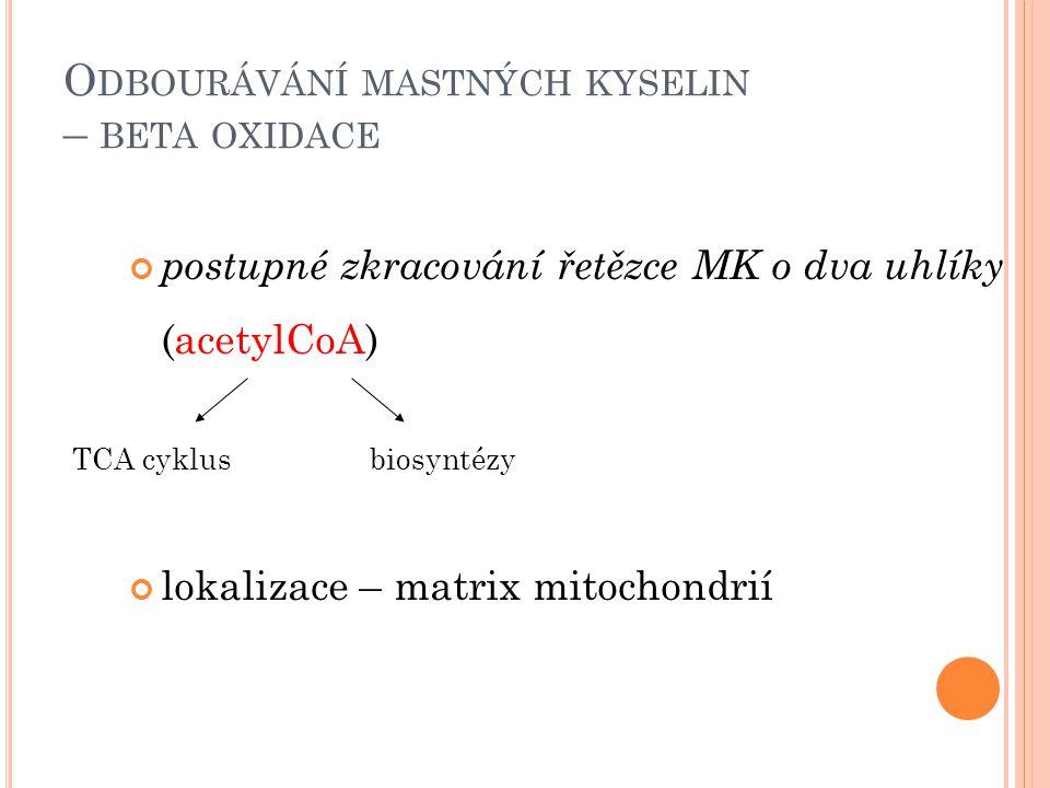 Odbourávání mastných kyselin – beta oxidace