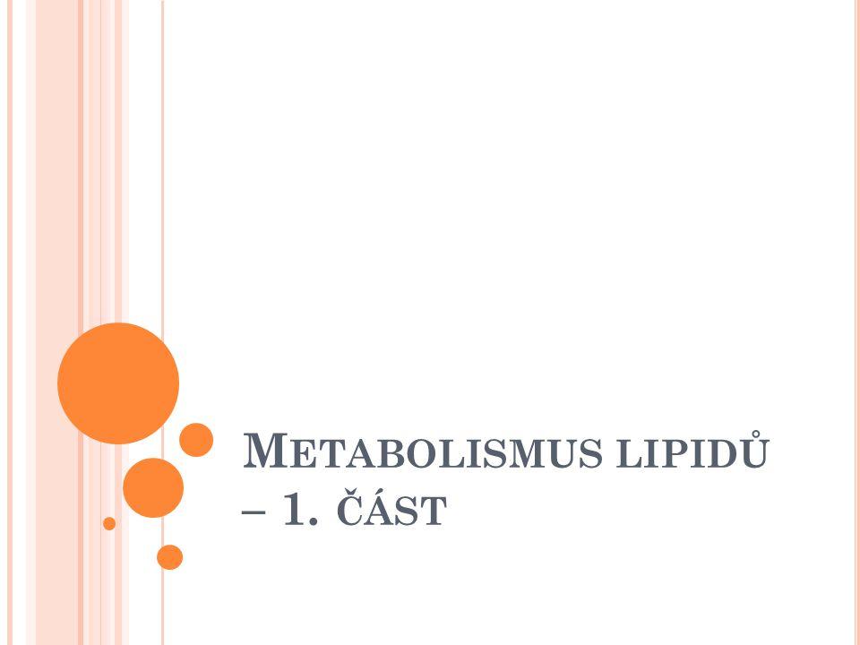 Metabolismus lipidů – 1. část