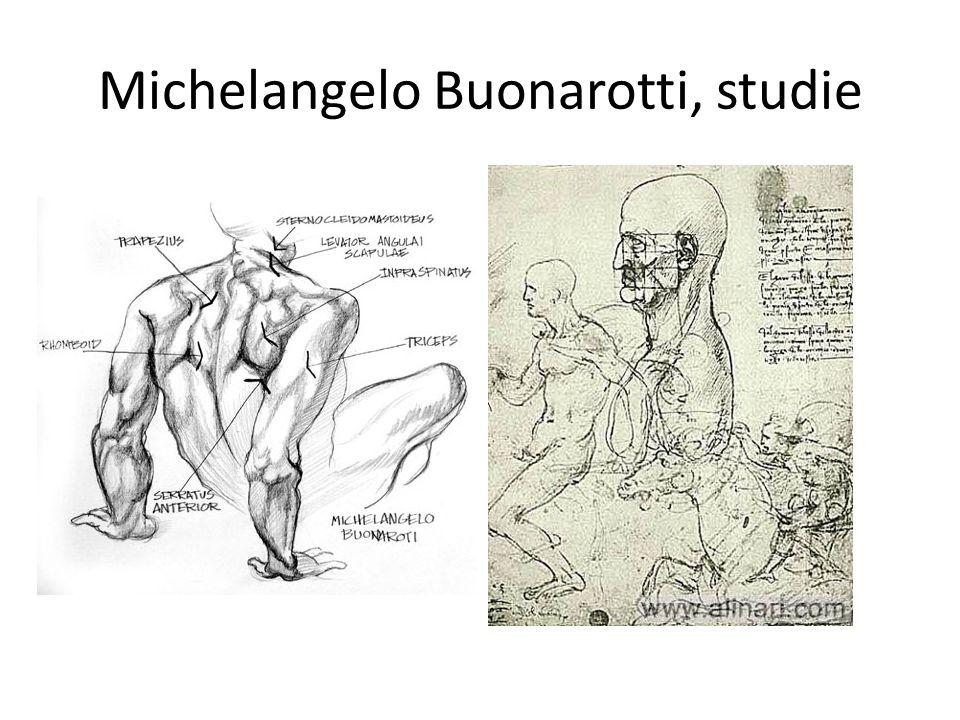 Michelangelo Buonarotti, studie