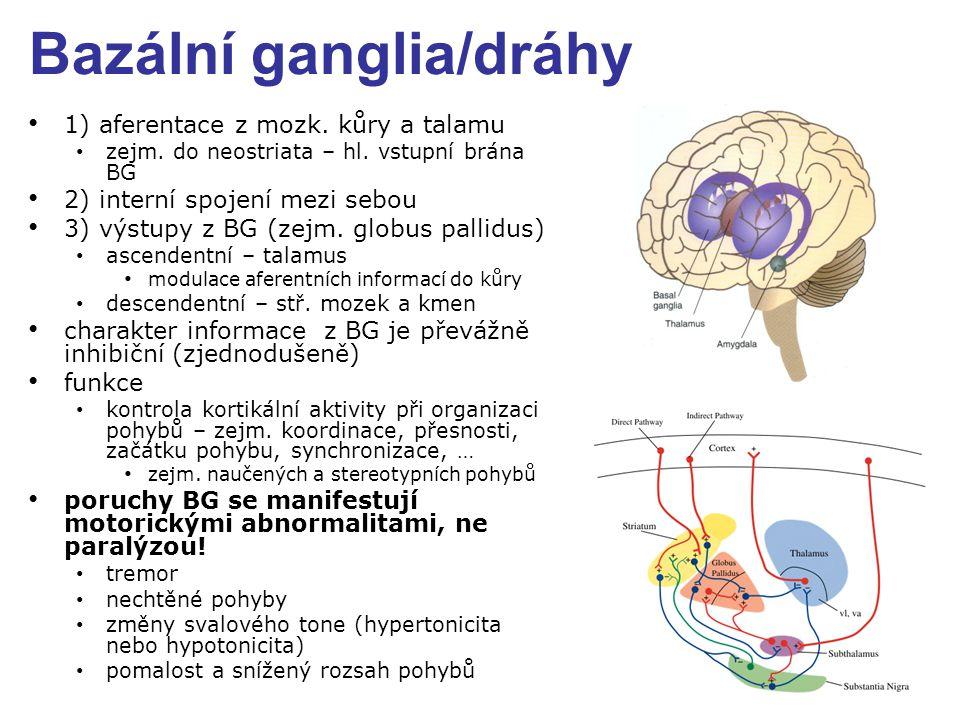 Bazální ganglia/dráhy