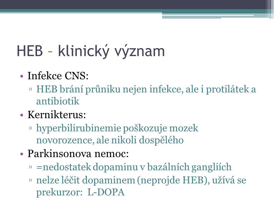 HEB – klinický význam Infekce CNS: Kernikterus: Parkinsonova nemoc: