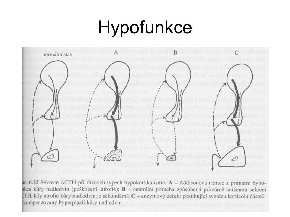Hypofunkce