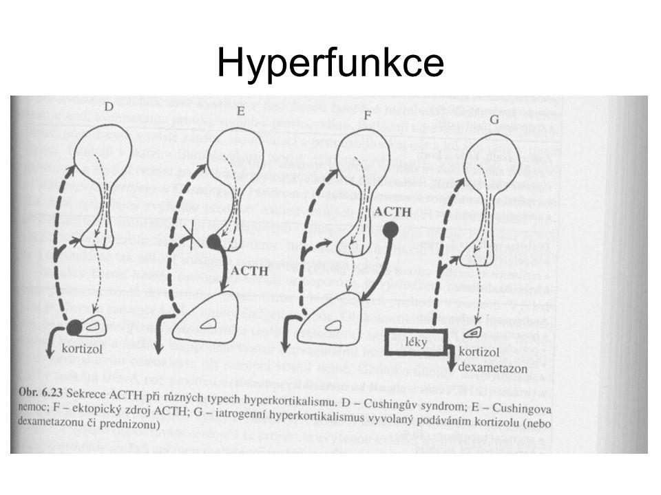 Hyperfunkce