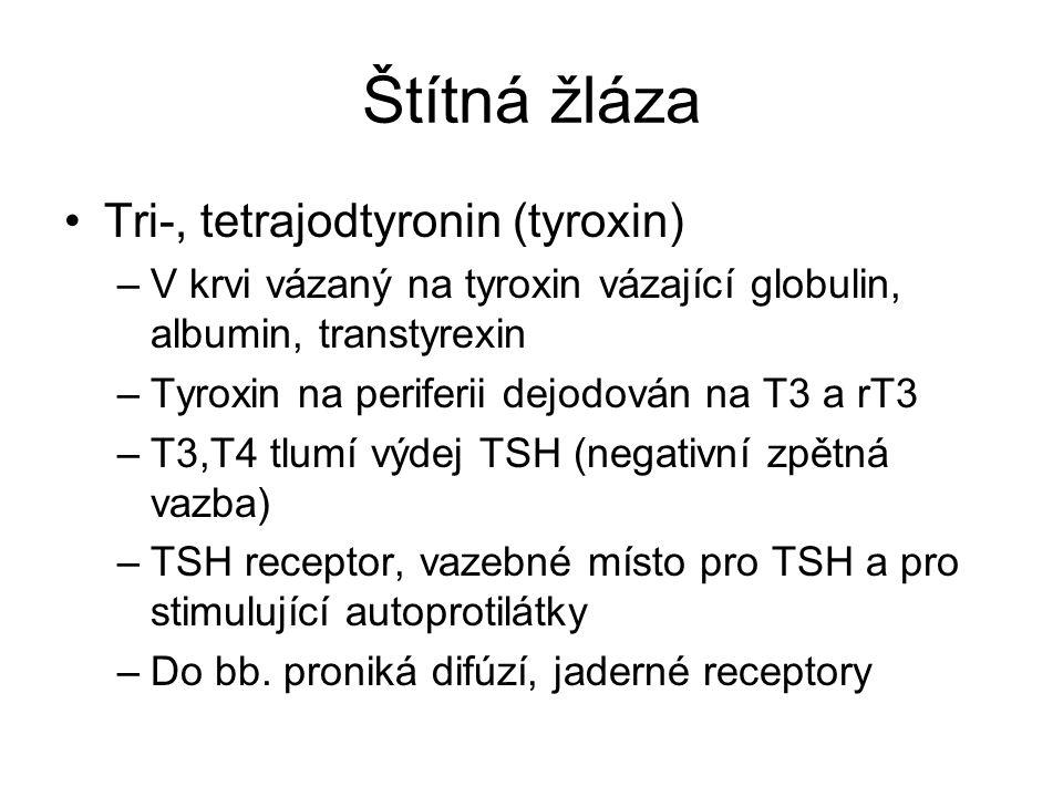 Štítná žláza Tri-, tetrajodtyronin (tyroxin)