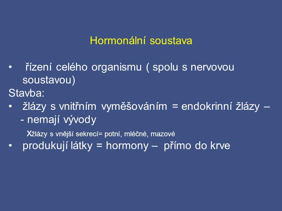 Hormonální soustava řízení celého organismu ( spolu s nervovou soustavou) Stavba: žlázy s vnitřním vyměšováním = endokrinní žlázy –