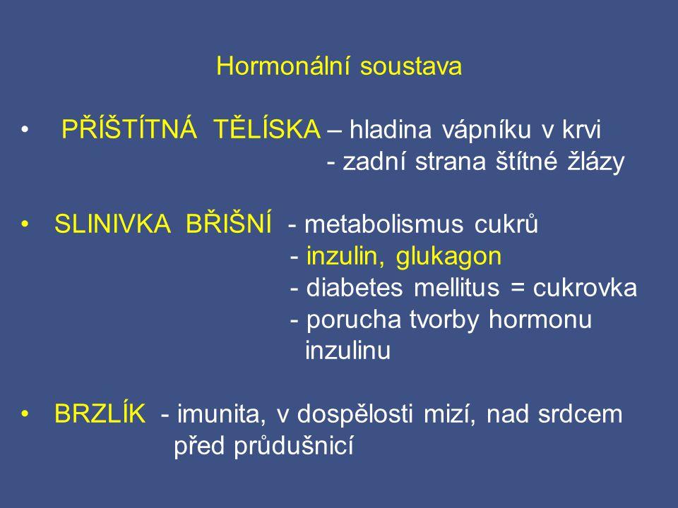 Hormonální soustava PŘÍŠTÍTNÁ TĚLÍSKA – hladina vápníku v krvi. - zadní strana štítné žlázy. SLINIVKA BŘIŠNÍ - metabolismus cukrů.
