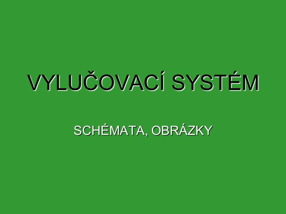VYLUČOVACÍ SYSTÉM SCHÉMATA, OBRÁZKY