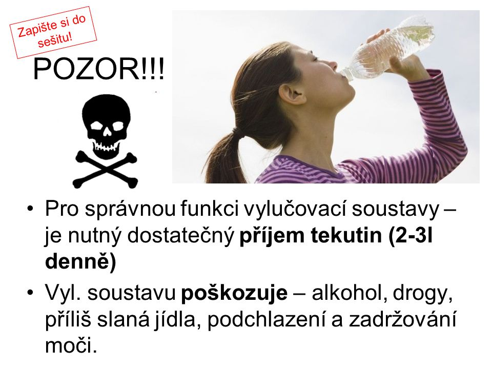 Zapište si do sešitu! POZOR!!! Pro správnou funkci vylučovací soustavy – je nutný dostatečný příjem tekutin (2-3l denně)