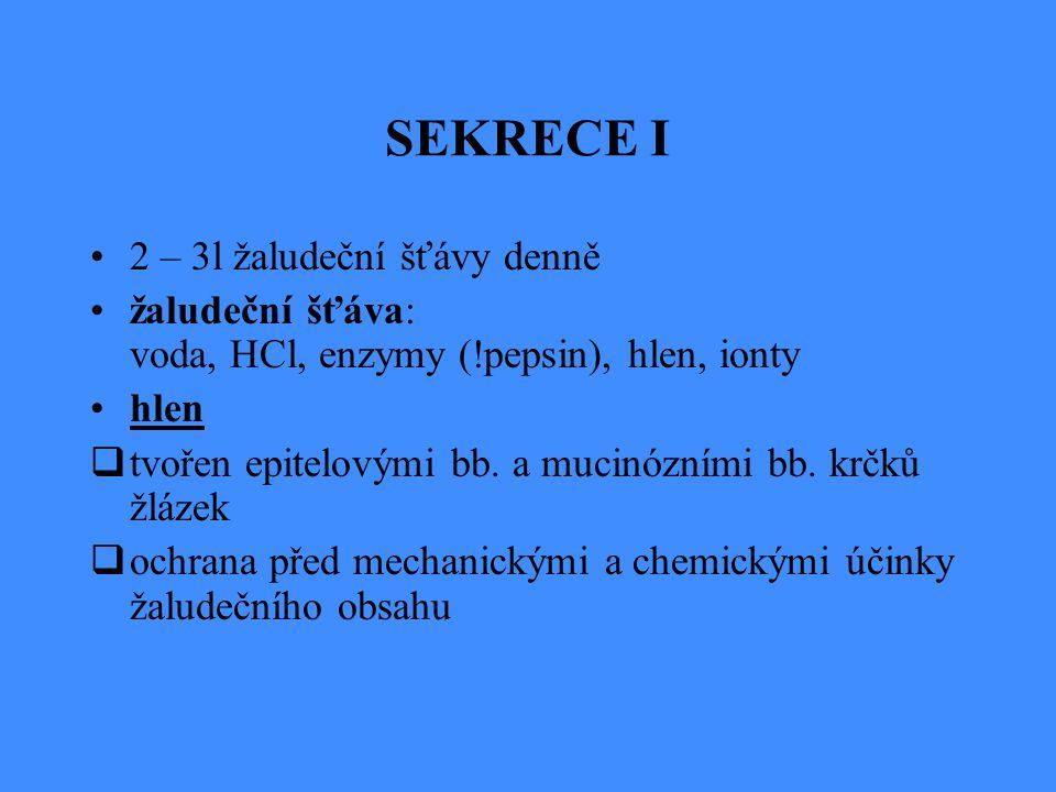 SEKRECE I 2 – 3l žaludeční šťávy denně