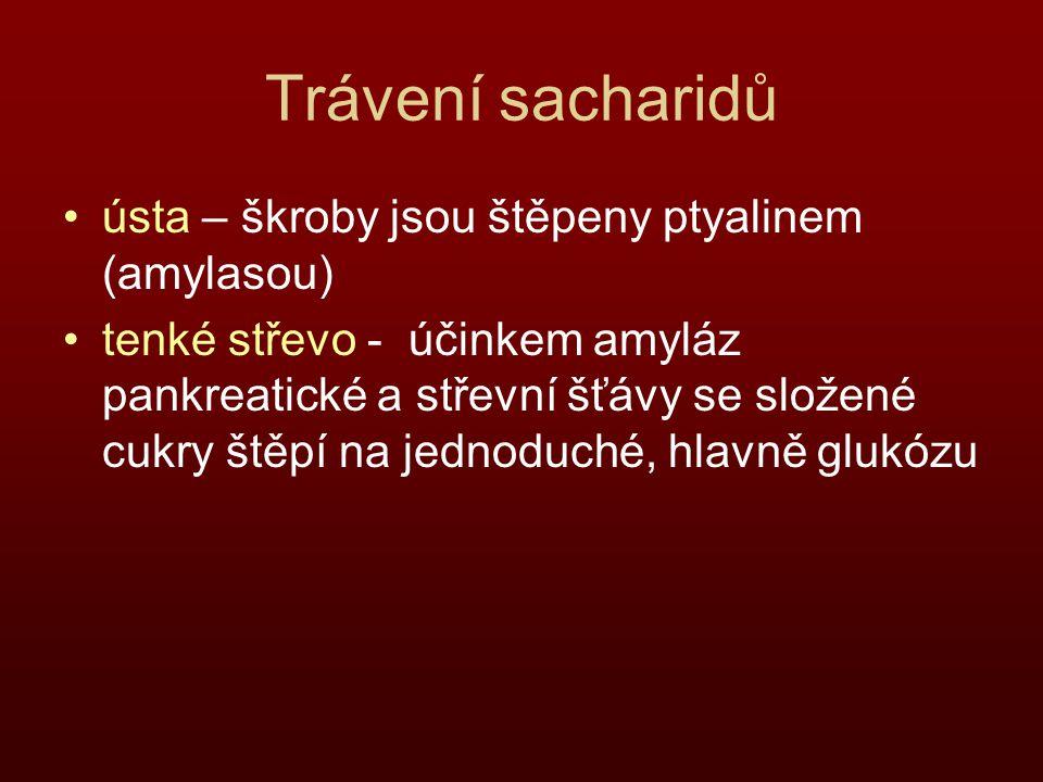 Trávení sacharidů ústa – škroby jsou štěpeny ptyalinem (amylasou)