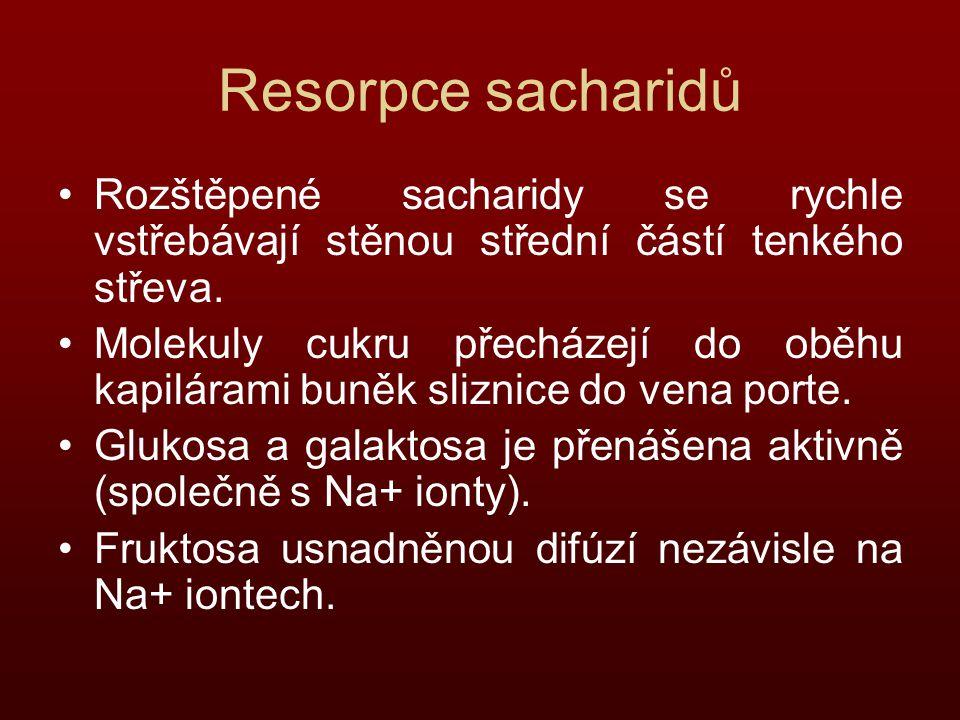 Resorpce sacharidů Rozštěpené sacharidy se rychle vstřebávají stěnou střední částí tenkého střeva.