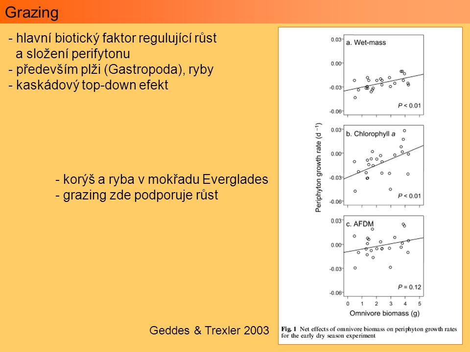 Grazing hlavní biotický faktor regulující růst a složení perifytonu
