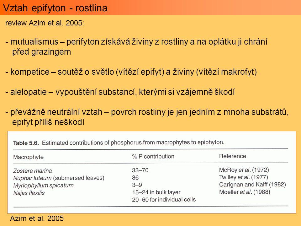 Vztah epifyton - rostlina