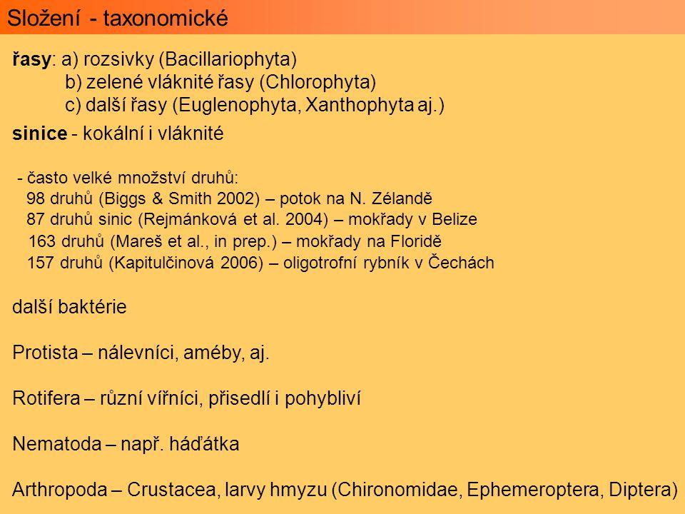 Složení - taxonomické řasy: a) rozsivky (Bacillariophyta)