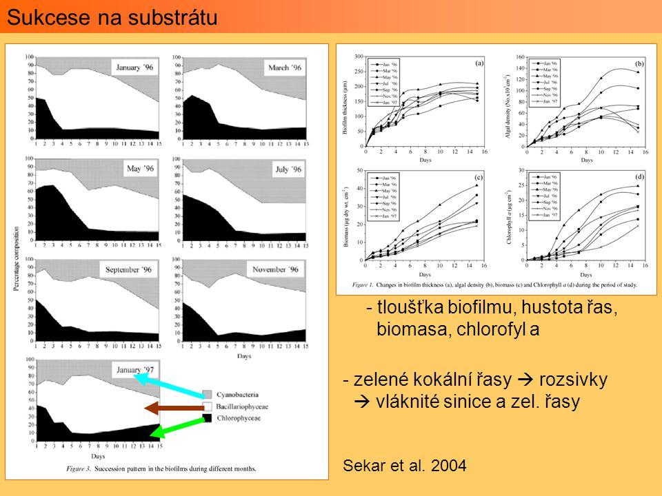 Sukcese na substrátu tloušťka biofilmu, hustota řas,