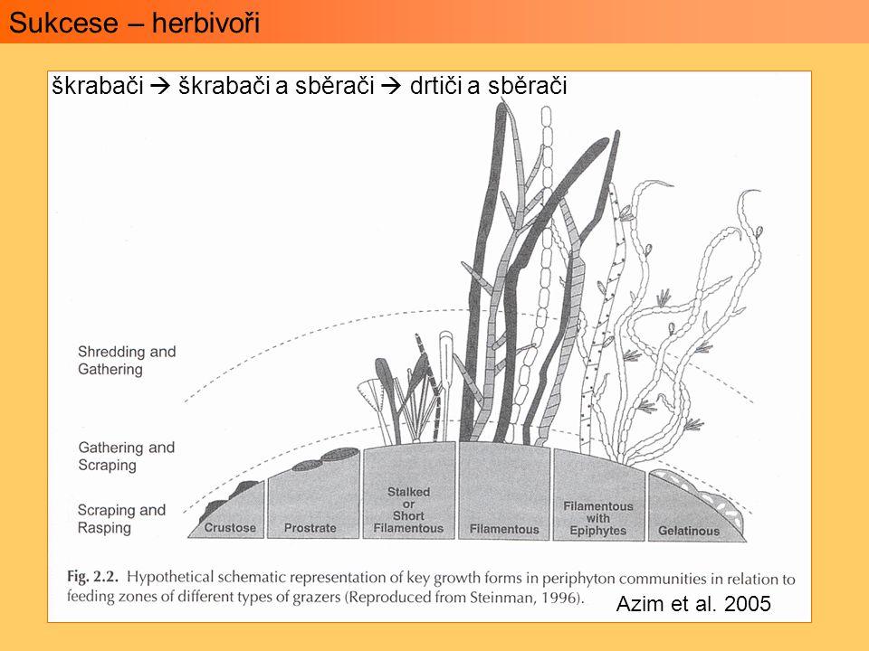 Sukcese – herbivoři škrabači  škrabači a sběrači  drtiči a sběrači