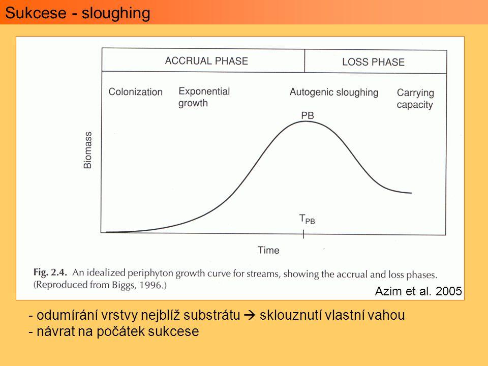 Sukcese - sloughing Azim et al. 2005. odumírání vrstvy nejblíž substrátu  sklouznutí vlastní vahou.