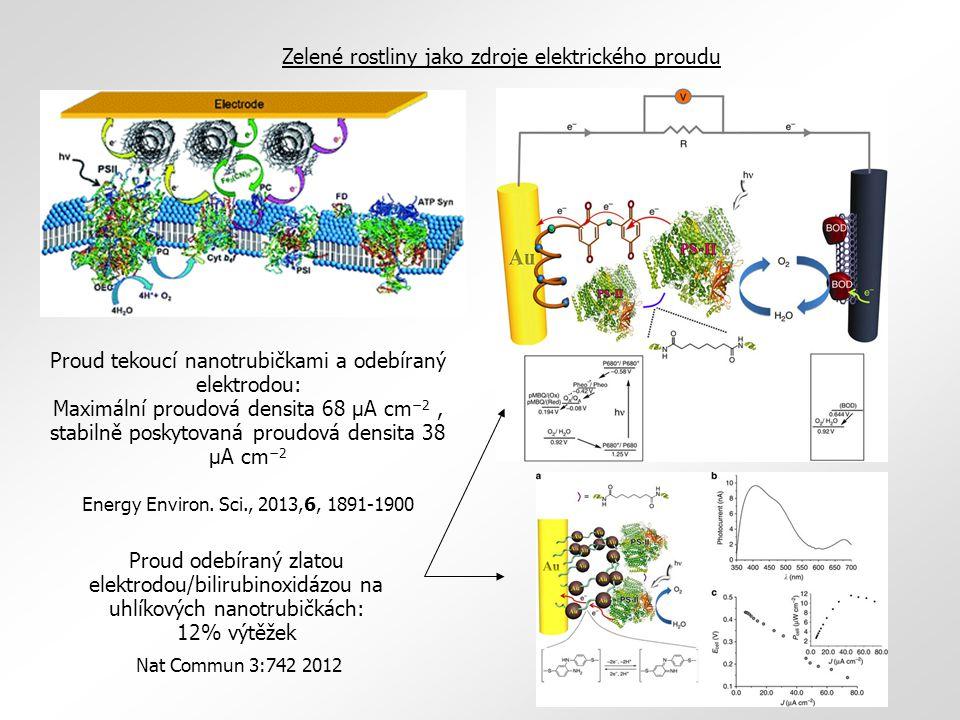 Proud tekoucí nanotrubičkami a odebíraný elektrodou: