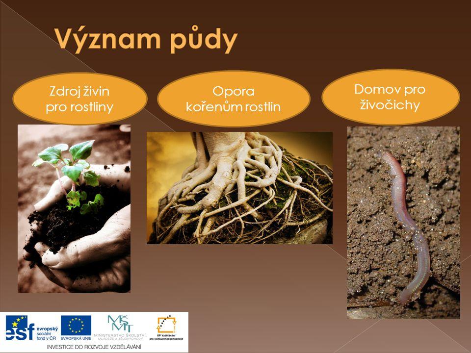 Zdroj živin pro rostliny