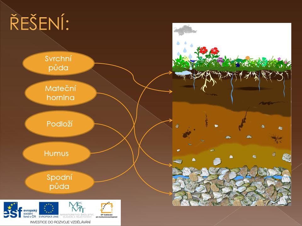 ŘEŠENÍ: Svrchní půda Mateční hornina Podloží Humus Spodní půda