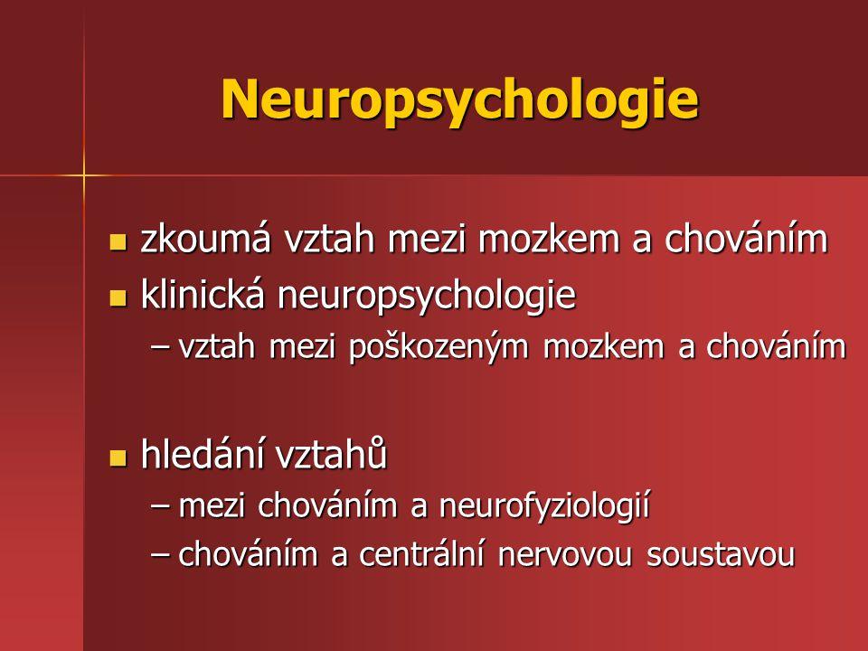 Neuropsychologie zkoumá vztah mezi mozkem a chováním