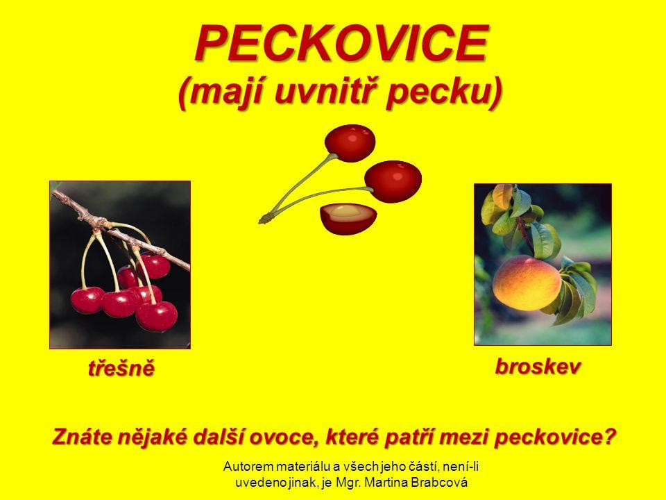 Znáte nějaké další ovoce, které patří mezi peckovice