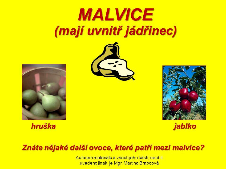 MALVICE (mají uvnitř jádřinec) hruška jablko