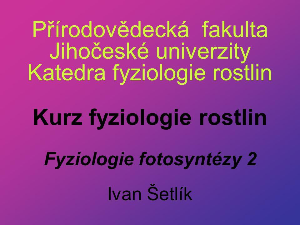 Přírodovědecká fakulta Jihočeské univerzity Katedra fyziologie rostlin Kurz fyziologie rostlin Fyziologie fotosyntézy 2 Ivan Šetlík