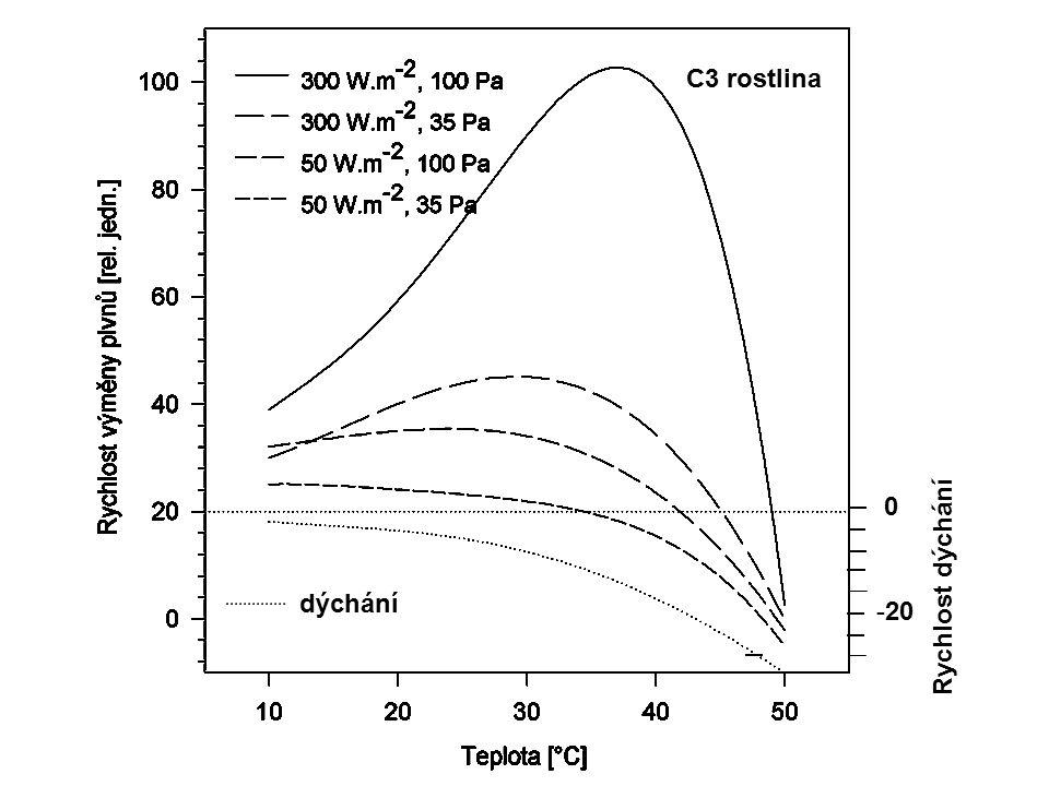 C3 rostlina dýchání Rychlost dýchání dýchání 20