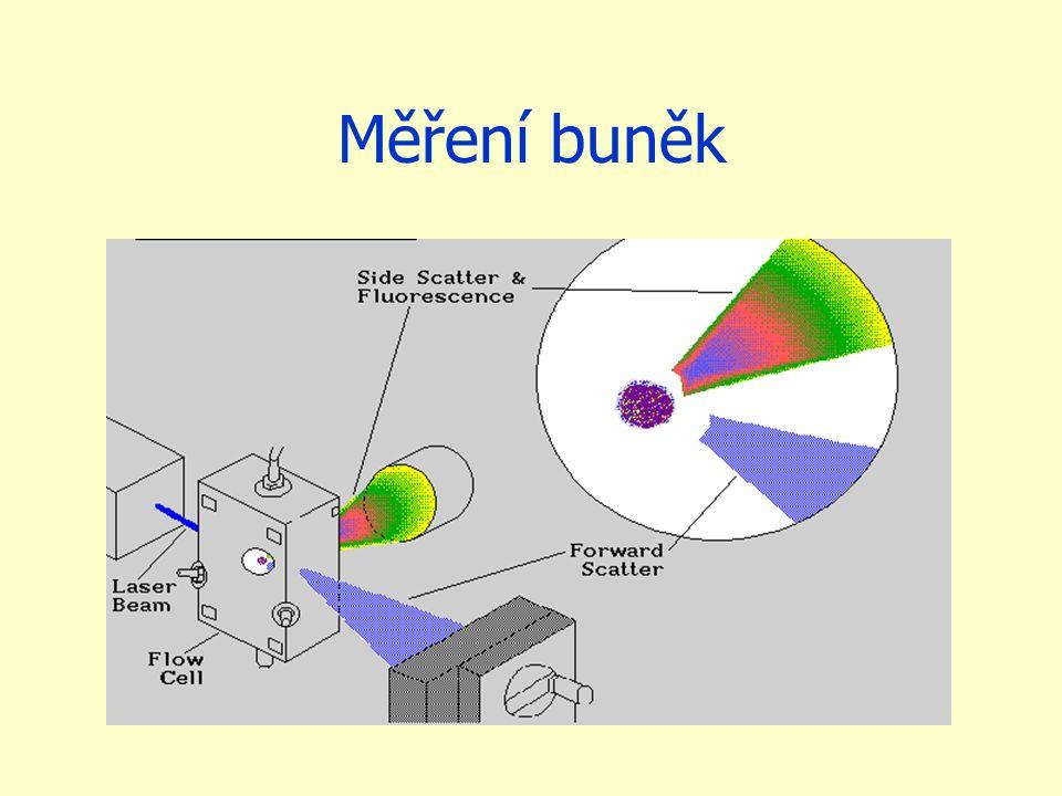 Měření buněk