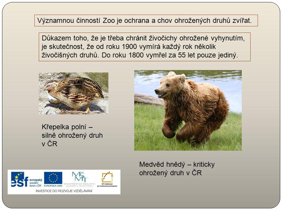 Významnou činností Zoo je ochrana a chov ohrožených druhů zvířat.