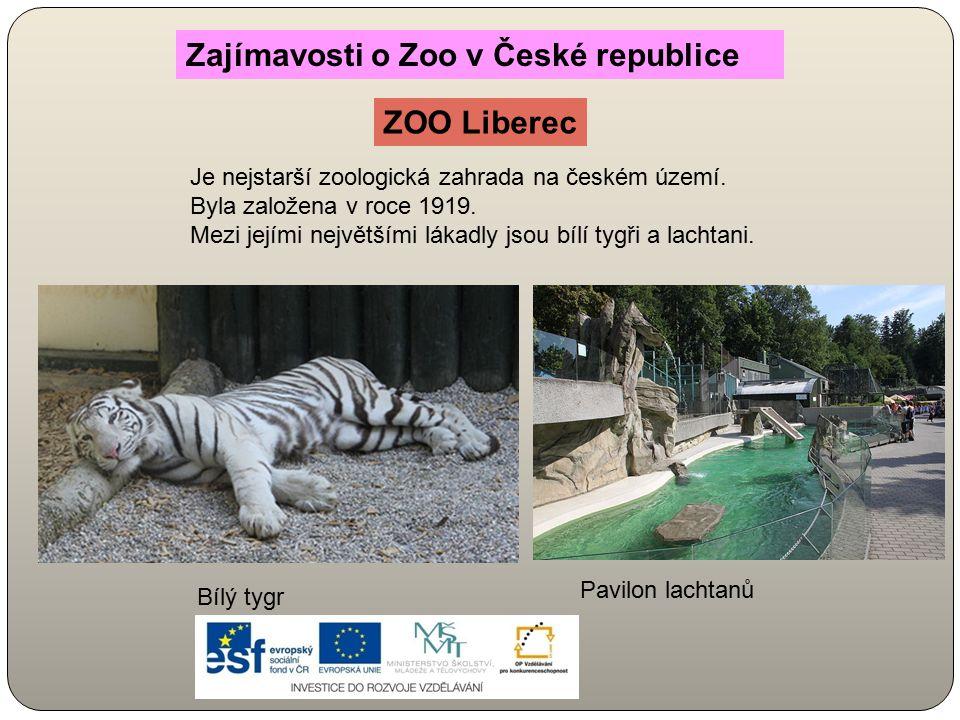 Zajímavosti o Zoo v České republice