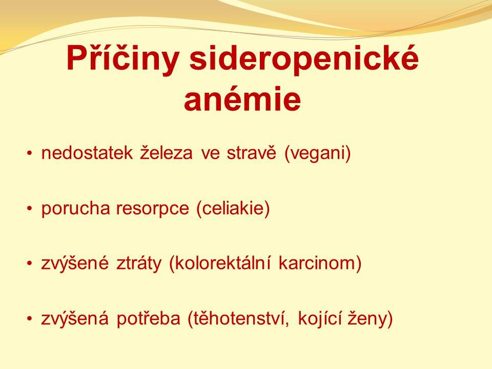 Příčiny sideropenické anémie