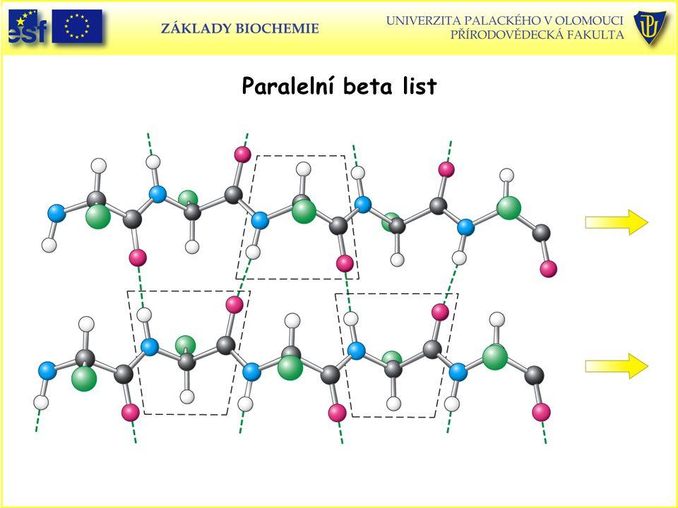 Paralelní beta list Proteiny, beta list paralelní (schema)