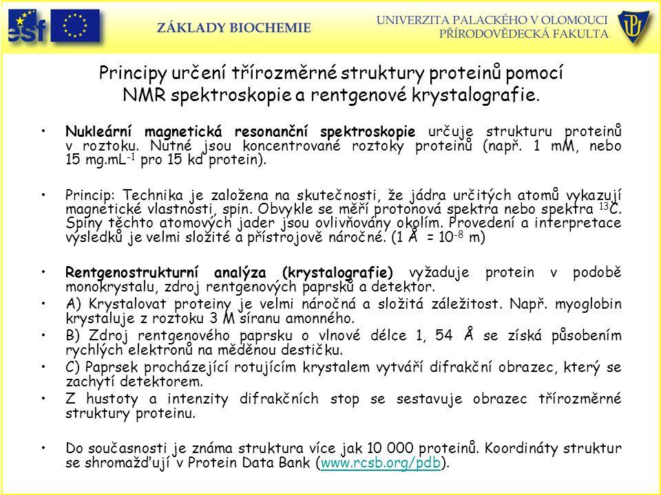 Principy určení třírozměrné struktury proteinů pomocí NMR spektroskopie a rentgenové krystalografie.