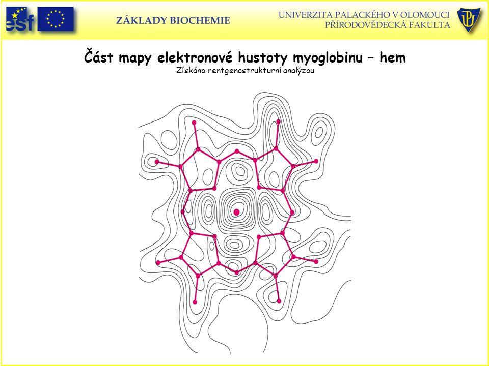 Část mapy elektronové hustoty myoglobinu – hem Získáno rentgenostrukturní analýzou
