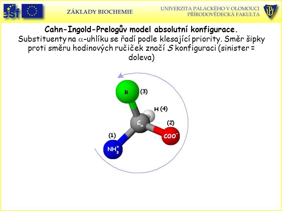 Cahn-Ingold-Prelogův model absolutní konfigurace