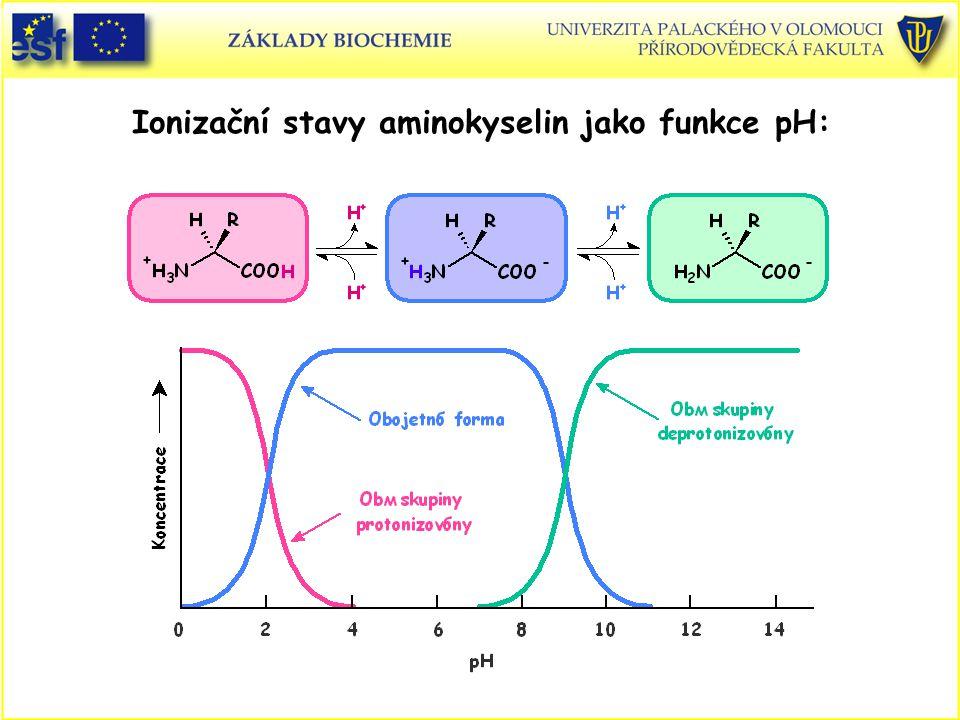Ionizační stavy aminokyselin jako funkce pH: