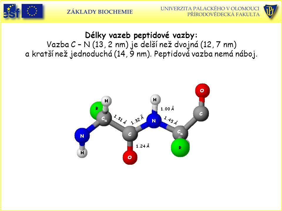 Délky vazeb peptidové vazby: Vazba C – N (13, 2 nm) je delší než dvojná (12, 7 nm) a kratší než jednoduchá (14, 9 nm). Peptidová vazba nemá náboj.