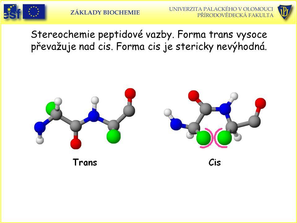 Stereochemie peptidové vazby. Forma trans vysoce převažuje nad cis