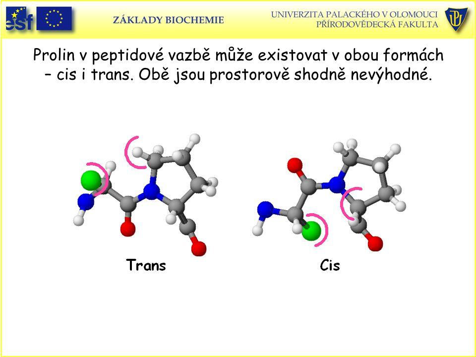 Prolin v peptidové vazbě může existovat v obou formách – cis i trans