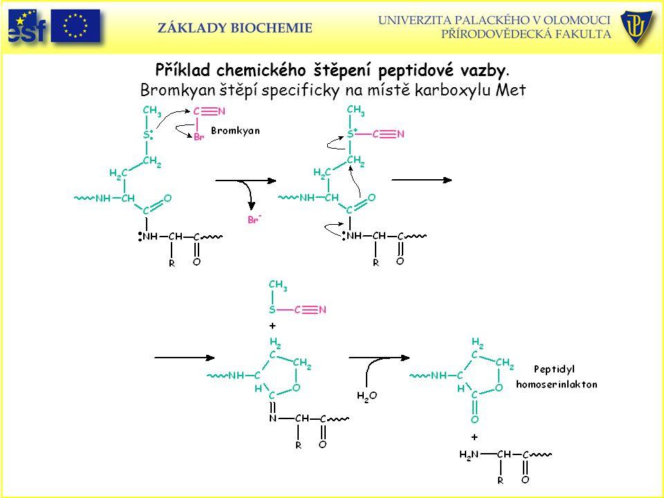 Příklad chemického štěpení peptidové vazby