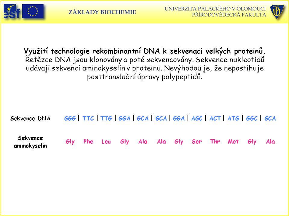 Využití technologie rekombinantní DNA k sekvenaci velkých proteinů