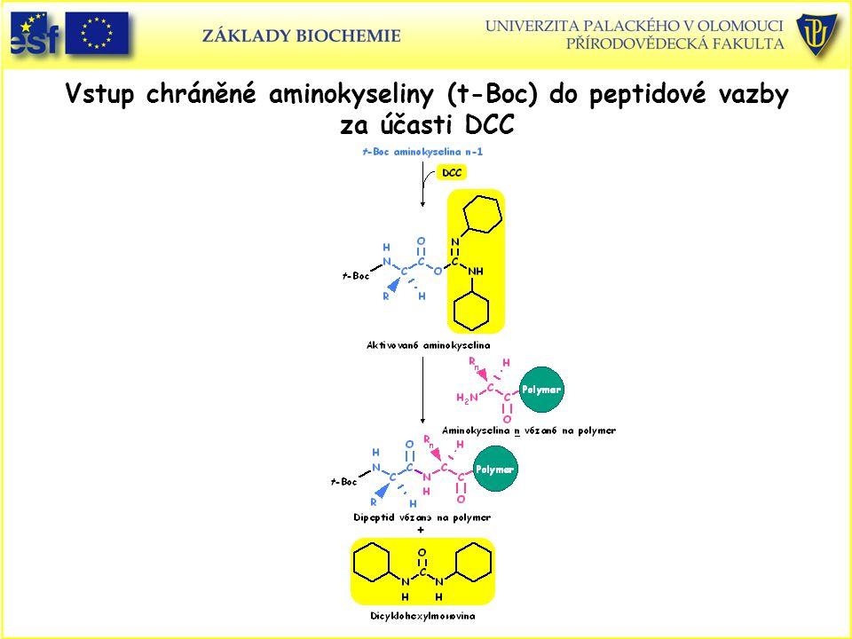Vstup chráněné aminokyseliny (t-Boc) do peptidové vazby za účasti DCC