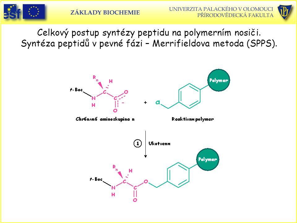 Celkový postup syntézy peptidu na polymerním nosiči