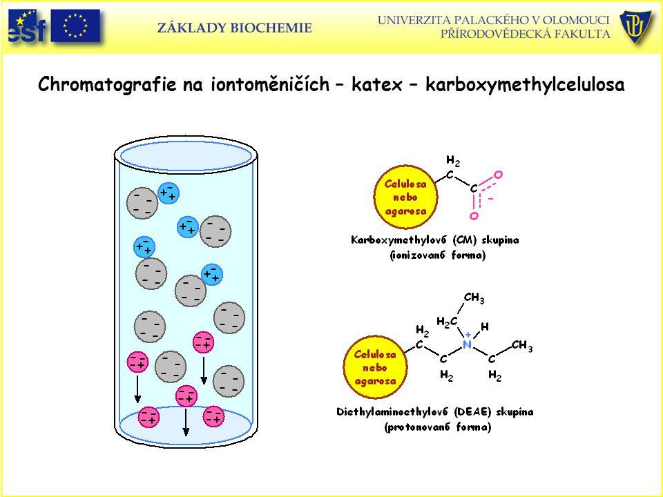 Chromatografie na iontoměničích – katex – karboxymethylcelulosa