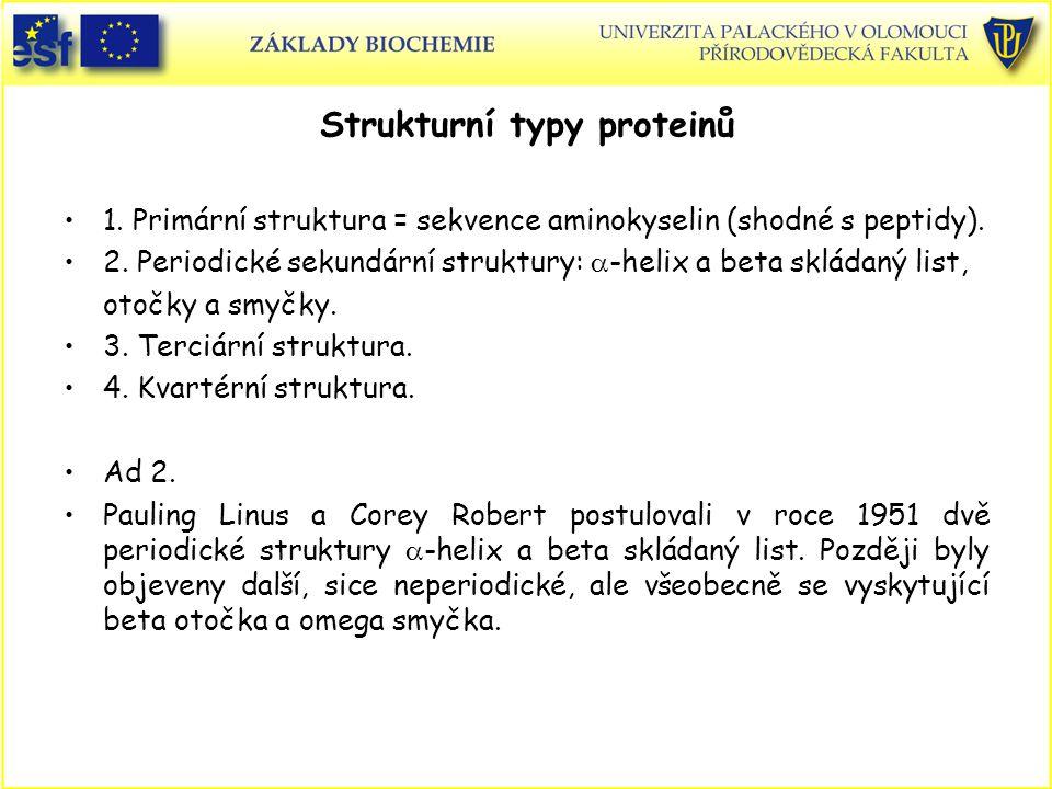 Strukturní typy proteinů